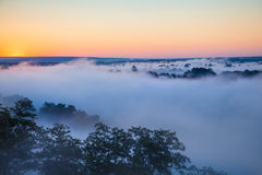 Misty dawn over Valley and the forest Stock Image