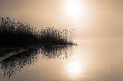 Misty dawn on the river.Horizontal view. Stock Image