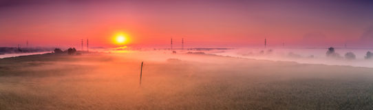 Misty dawn Stock Images