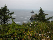 Misty Day on the Oregon Coast Royalty Free Stock Photo