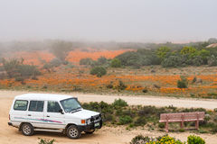 Misty day at the Roof of Namaqualand viewpoint at Skilpad Royalty Free Stock Photos