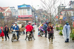 Misty day in Sapa, Vietnam Stock Photos