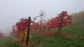 A misty day in the south of Styria. A misty autumn-day in the south of Austria. You see a Klapotetz (windwheel)  between colorful grapevines. The view is from Royalty Free Stock Photos