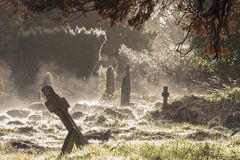 A misty day in the Old Cemetery on Southampton Common royalty free stock image