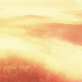 Misty daybreak in a beautiful hills. Peaks of hills are sticking out from foggy background, the fog is yellow and orange due to su Stock Photography