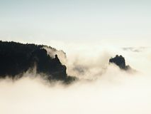Misty dreamy landscape. Deep misty valley in autumn Saxony Switzerland park full of heavy clouds of dense fog. Sandstone peaks inc Royalty Free Stock Image