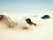 Misty dreamy landscape. Deep misty valley in autumn Saxony Switzerland park full of heavy clouds of dense fog. Sandstone peaks inc Royalty Free Stock Images