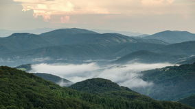 Misty evening above clouds moving in green forest valley time lapse stock video