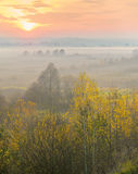 Misty evening in autumn. Royalty Free Stock Images