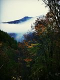 Misty Fall Morning in Grote Smokies Stock Foto's