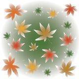 Misty falling maple leaves illustration stock illustration
