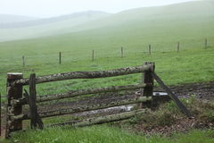 Misty farm gate Stock Image