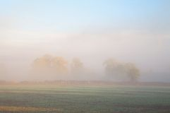 Misty farmland background Royalty Free Stock Photos