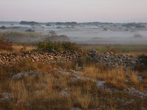 Misty field. With dry grass and a dry stone wall Stock Image