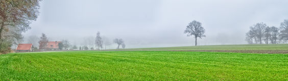 Misty field Royalty Free Stock Images