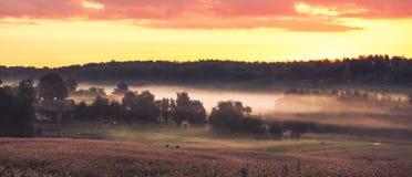 Misty field at sunrise Royalty Free Stock Photo