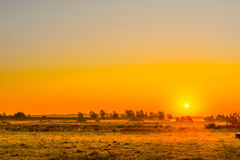 Misty field with a sunrise Royalty Free Stock Photography
