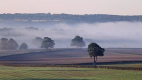 Misty Fields della campagna britannica all'autunno stock footage