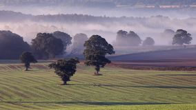 Misty Fields della campagna britannica all'autunno archivi video