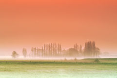 Misty Flanders background Royalty Free Stock Photos