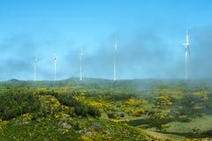 Misty Flat Plateau område med vindturbiner i bergen i norden av ön av madeiran Arkivbild