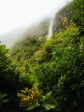 Misty Fog at El Chorro Waterfall in Ecuador. Lush Tropical Landscape with Waterfall in the distance in Giron, Ecuador Stock Photos