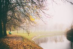 Misty fog forest in Belarus park by the river, golden autumn folliage. Misty fog forest on the sunrise morning in the autumn folliage in park by the river royalty free stock photos