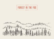 Misty fog pine forest mountain vector drawn sketch Royalty Free Stock Photography