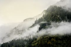 Fog covering the mountain forests with low cloud in Juneau alaska for fog landscape Stock Photos