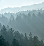 Misty fog. View of misty fog mountains in autumn Stock Image