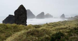 Misty Foggy Beach Pacific Ocean West Coast USA Stock Images