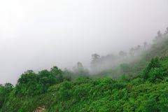 Misty Foggy Landscape On Bad-de Dag van de Weerzomer royalty-vrije stock foto