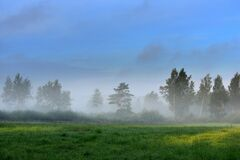 Misty foggy sunrise in summer