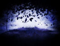Misty forest. Dark misty forest at night time illustration Stock Images