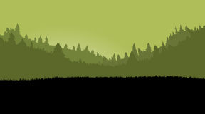 Misty forest landscape for games background, with dark grass. Pa Stock Photography