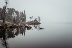 Misty forest. In Mon Repos park in Vyborg Stock Photos