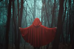 Red hooded figure royalty free stock photos