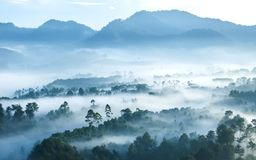 Misty forest seen from top at morning. With line of hills in the background, when sun starting to rising, located in Keraton Cliff, Bandung Bandung, Indonesia Stock Photo