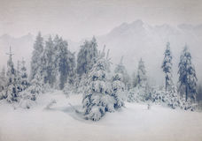 Misty forest in winter in the mountains Royalty Free Stock Photography