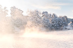 Misty frozen lake at sunrise. Sunbeams over lake in winter time Royalty Free Stock Photography
