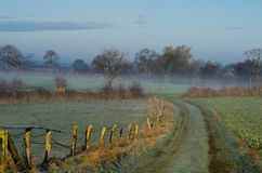 Misty German-landbouwgrond Stock Fotografie
