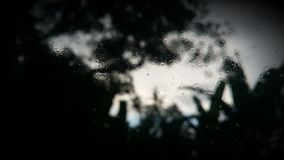 Misty Glass Arkivbild