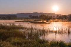 Misty Golden Sunrise Reflecting sobre el lago en primavera fotografía de archivo