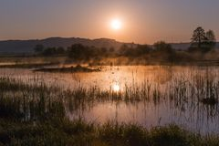 Misty Golden Sunrise Reflecting sobre o lago na mola fotos de stock royalty free