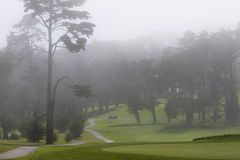 Misty golf course Royalty Free Stock Photos
