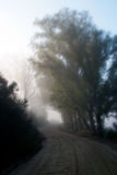 Misty gravel road Royalty Free Stock Photography