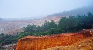 Misty hill of Dalat, Vietnam. Pine trees on hill at misty day in Dalat, Central Highlands, Vietnam Royalty Free Stock Photography