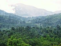 Misty hills. Kalasa hill station misty stock photography
