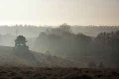 Misty hills near the Posbank Stock Images