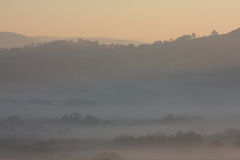 Misty Hills And Trees At Dawn Stock Photo